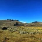 Grand Teton and Yellowstone – 10 Years Gone